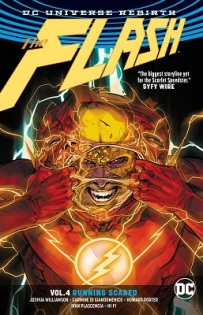The Flash Volume 4